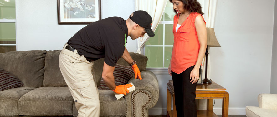 Macomb, MI carpet upholstery cleaning