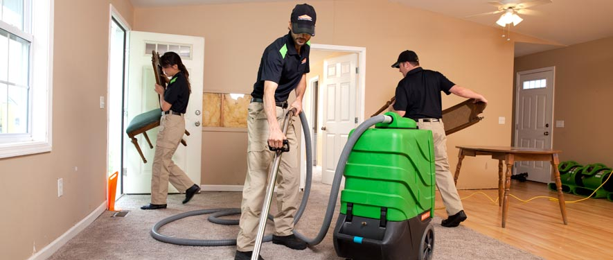 Macomb, MI cleaning services